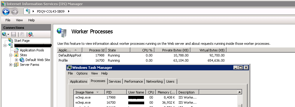 IIS_Worker_Process_TaskManager